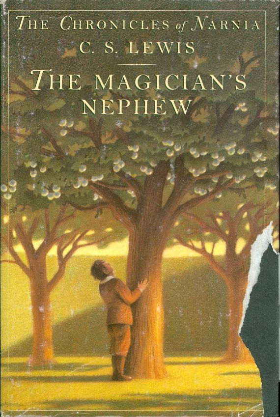 the magicians nephew temptation The magician's nephew is my favorite in the series because this is exactly how you should feel when a wonderful adventure begins there is something wrong with the rating system.